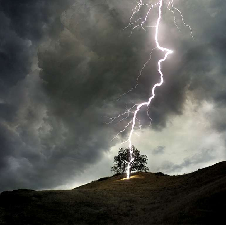 lightning_strikes_tree_2