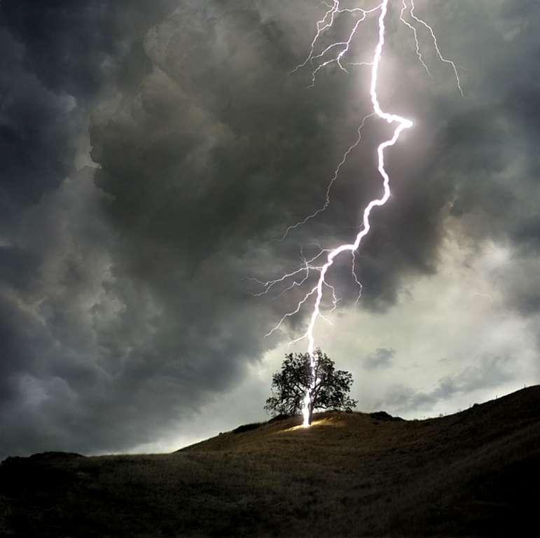 lightning_strikes_tree_2